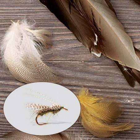 Mallard Duck Side Feathers