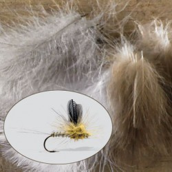 Cul de Canard Feathers