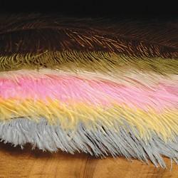 Ostrich Herl