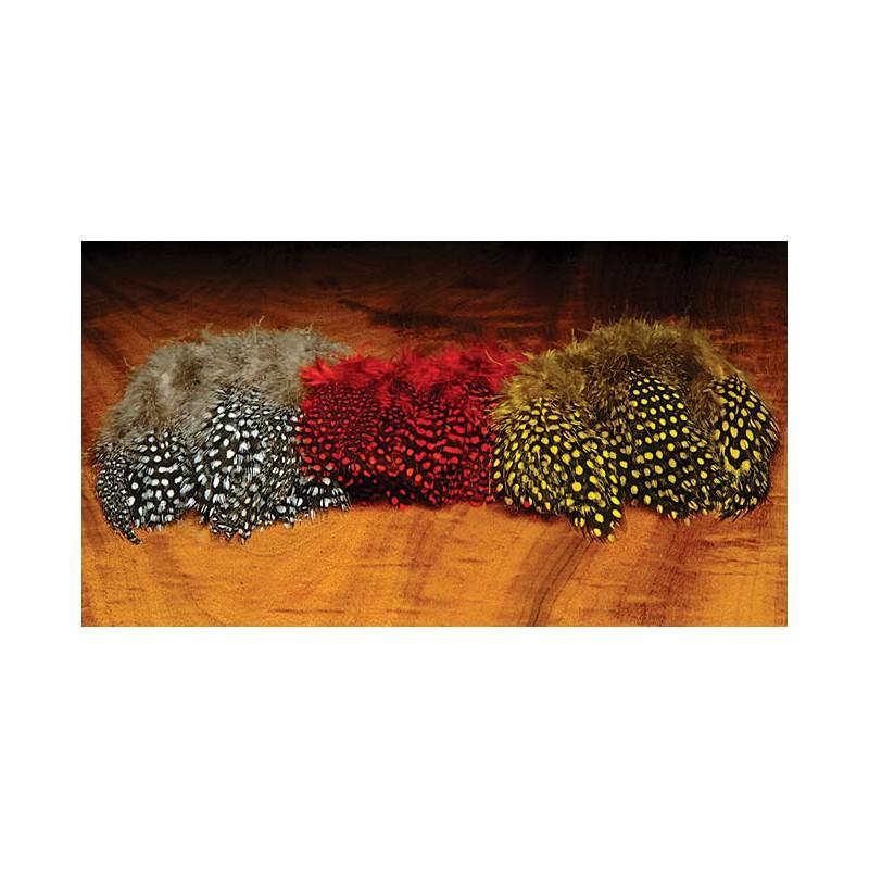 Guinea Feathers