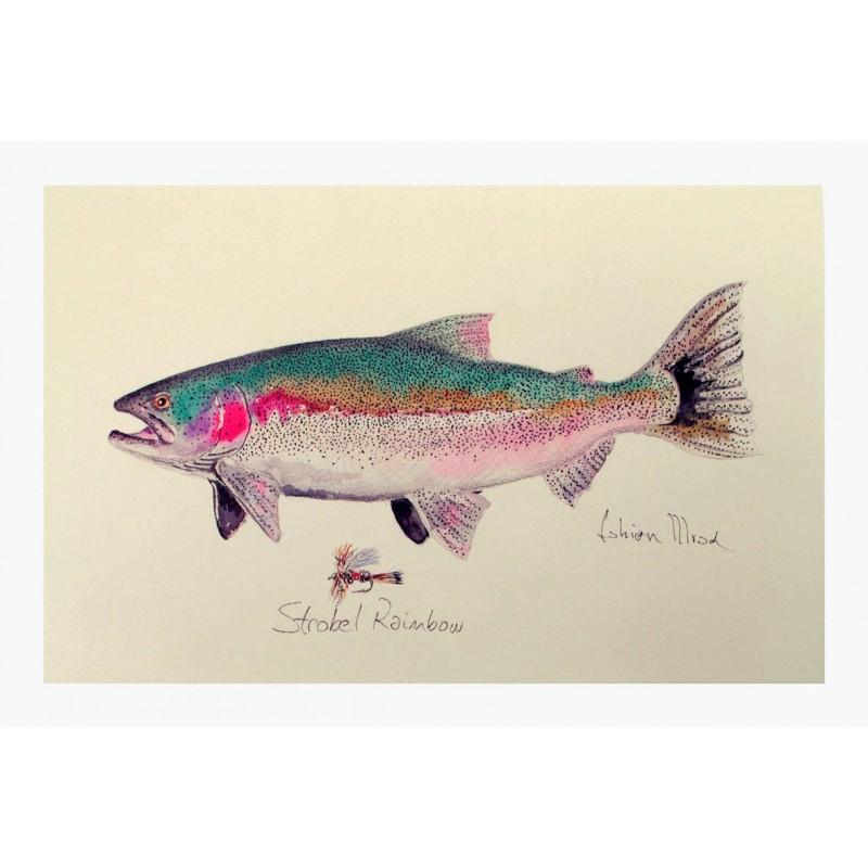 Prints & Replicas watercolours by Fabián Mrad