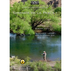 Fly Fishing Paths I